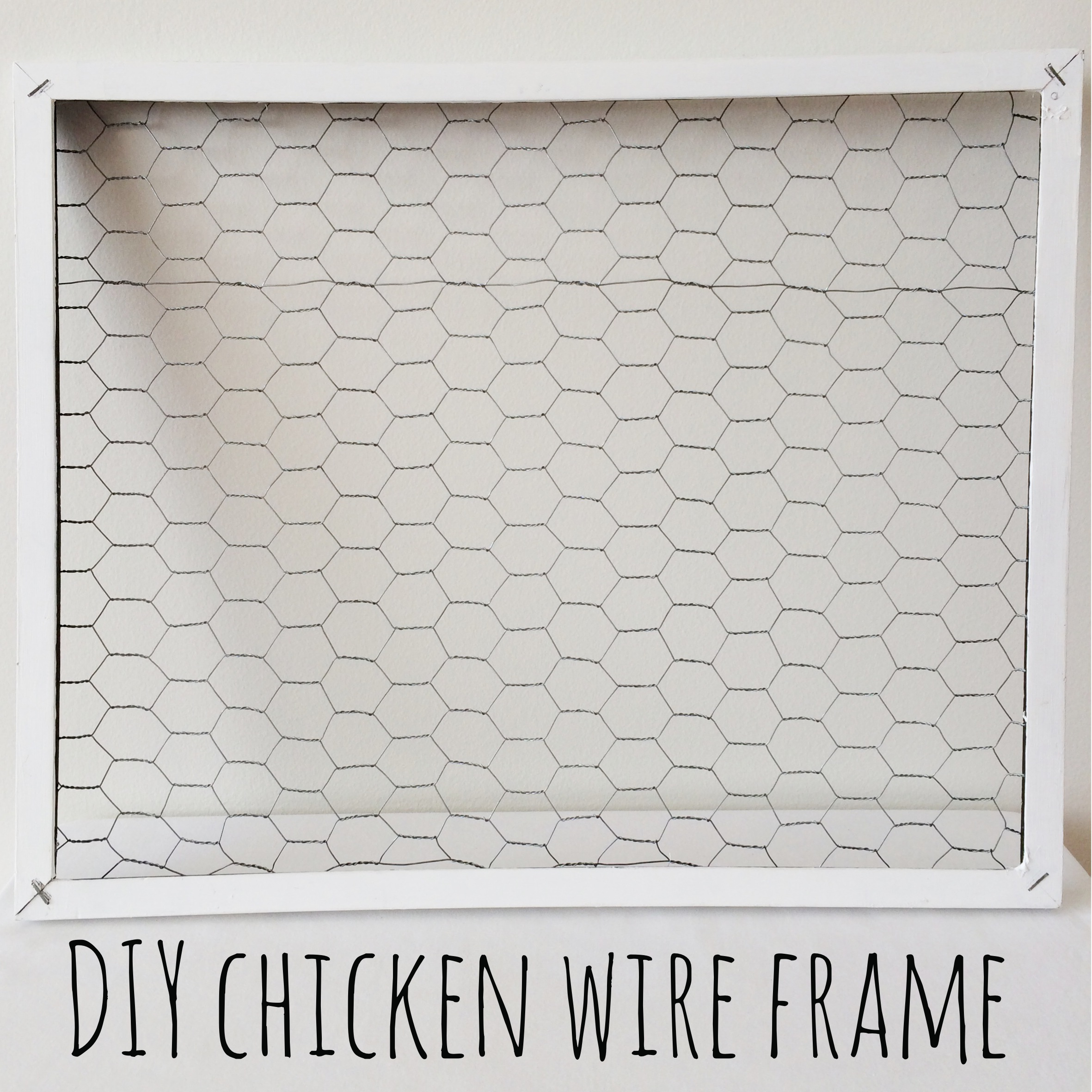 Diy Wire Frame Glasses : DIY Chicken Wire Frame Red Autumn Co.