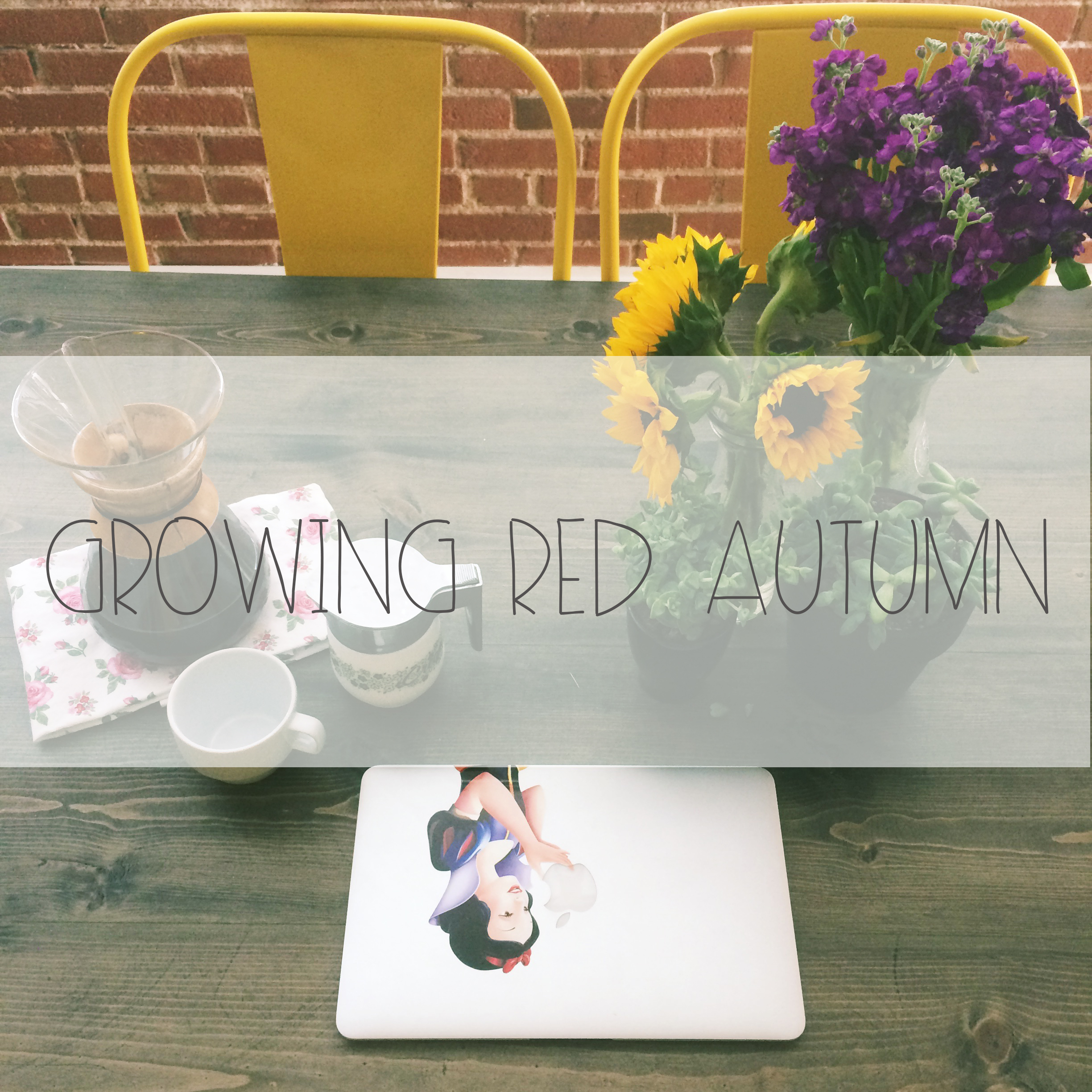Growing Red Autumn | Red Autumn